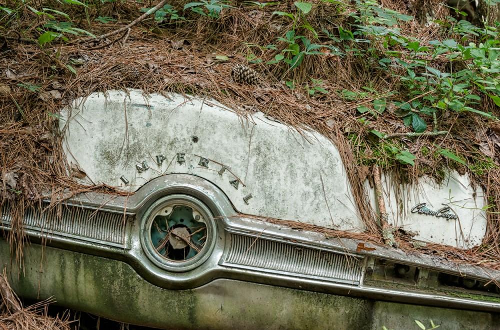 Old Cars & Trucks ‹ Cheryl Schneider Photography
